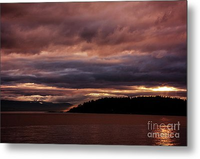 Storm 3 Metal Print by Elaine Hunter