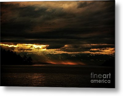 Storm Metal Print by Elaine Hunter