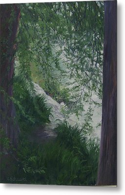 Stream From The Shady Trees Metal Print by Connie Schaertl