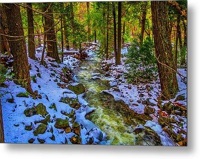Stream Through Snowy Forest Metal Print by Garry Gay