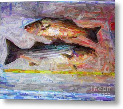 Striped Bass Keepers Metal Print by Wingsdomain Art and Photography