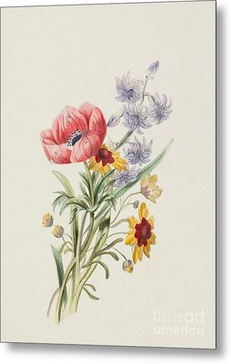Study Of Wild Flowers Metal Print by English School