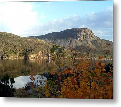 Metal Print featuring the photograph Sugarloaf Hill In Autumn by Barbara Griffin