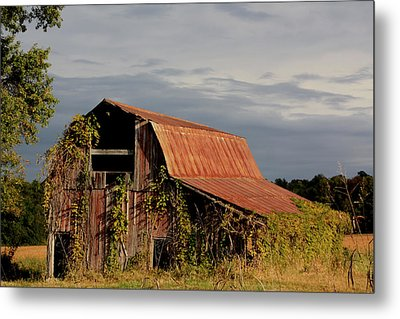 Summer Barn Metal Print by Diane Merkle
