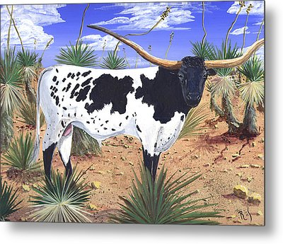 Summer On The High Mesa Metal Print by Dan RiiS Grife