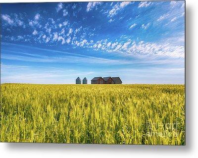 Summer On The Prairies Metal Print by Ian McGregor