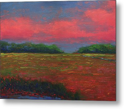 Summer Wetlands - Outlet Metal Print by Vernon Reinike