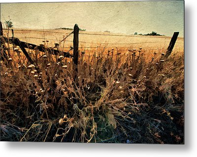 Metal Print featuring the photograph Summertime Country Fence by Steve Siri