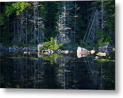 Summertime Reflections On The Lake Metal Print