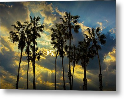 Metal Print featuring the photograph Sunbeams And Palm Trees By Cabrillo Beach by Randall Nyhof