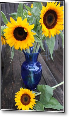 Sunflowers And Blue Vase - Still Life Metal Print by Dora Sofia Caputo Photographic Art and Design