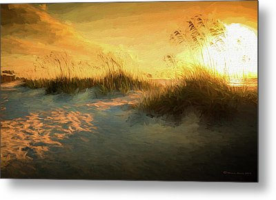 Sunlight On The Dunes Metal Print