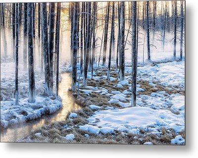 Sunrise Creek Metal Print by Doug Oglesby