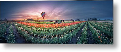 Metal Print featuring the photograph Sunrise, Hot Air Balloon And Moon Over The Tulip Field by William Lee