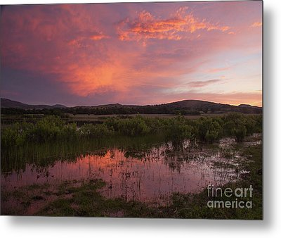 Sunrise In The Wichita Mountains Metal Print by Iris Greenwell