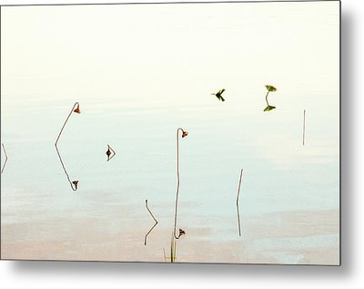 Sunrise Minalism Metal Print by Carolyn Dalessandro