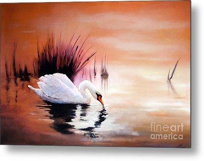 Sunrise On Swan Lake Metal Print by Michael Rock