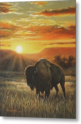 Sunset In Bison Country Metal Print