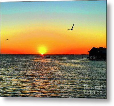 Sunset In Tampa Metal Print