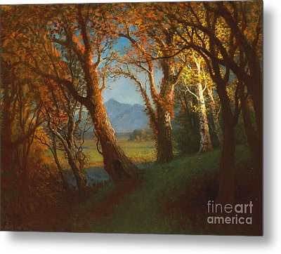 Sunset In The Nebraska Territory Metal Print by Albert Bierstadt