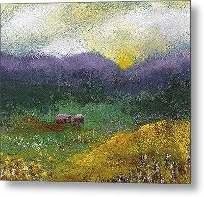 Sunset Meadow Metal Print by David Patterson