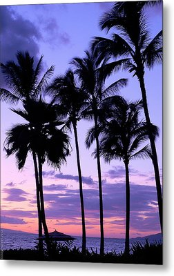 Metal Print featuring the photograph Sunset On The Palms by Debbie Karnes