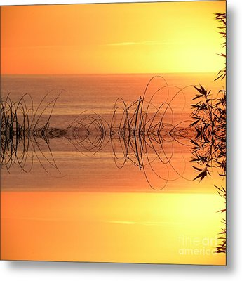 Sunset Reflection Metal Print by Sheila Ping