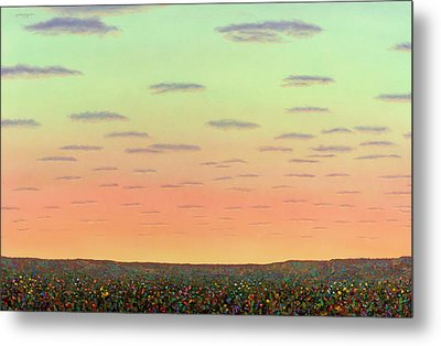 Sunset With Wildflowers Metal Print by James W Johnson