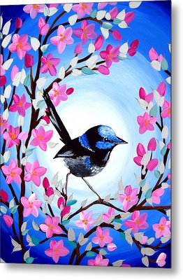 Superb Fairy Wren Metal Print by Cathy Jacobs