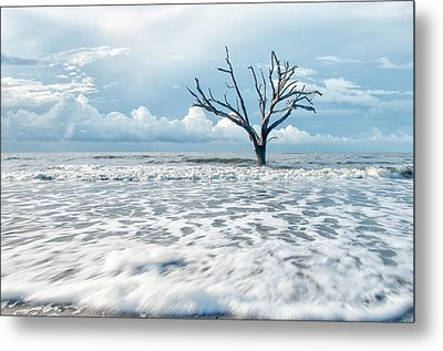 Surfside Tree Metal Print by Phyllis Peterson