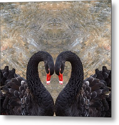 Swan Heart Metal Print by Arik Baltinester