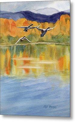 Swan Lake Revisited Metal Print by Kris Parins