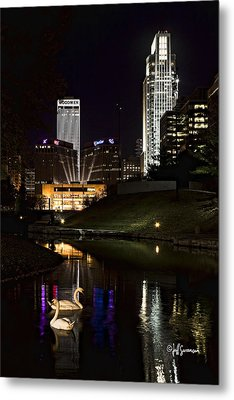 Swans At Night Metal Print