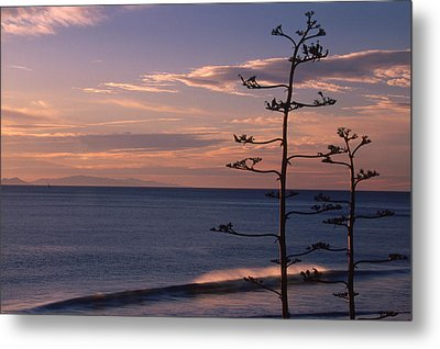 Sycamore Cove And Channel Islands Metal Print