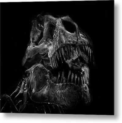 T Rex Skull Metal Print