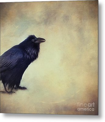 Talking Of Good Things Metal Print by Priska Wettstein