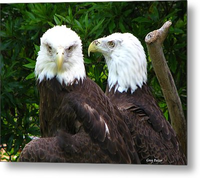 Talking To Me Metal Print by Greg Patzer