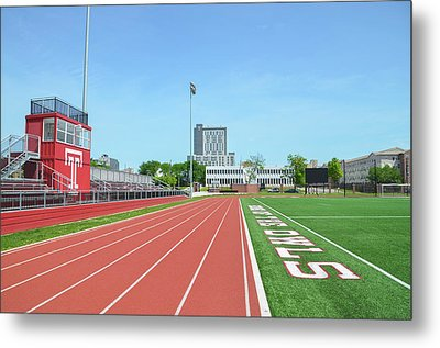Temple Owls - Dan And Shelley Boyce Track Metal Print by Bill Cannon