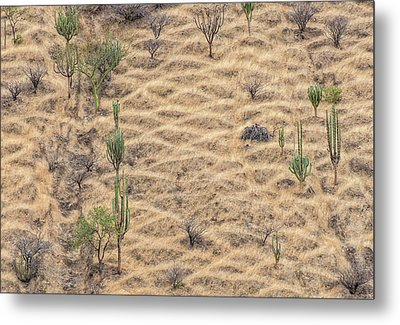 Metal Print featuring the photograph Terraced Slope by Britt Runyon
