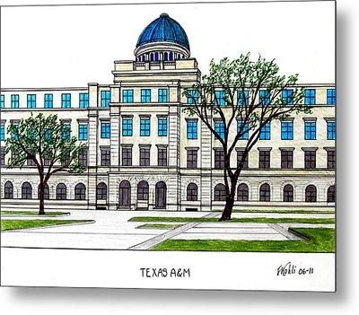 Texas Am University Metal Print by Frederic Kohli
