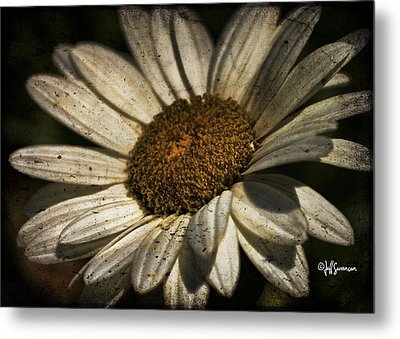 Textured White Flower Metal Print