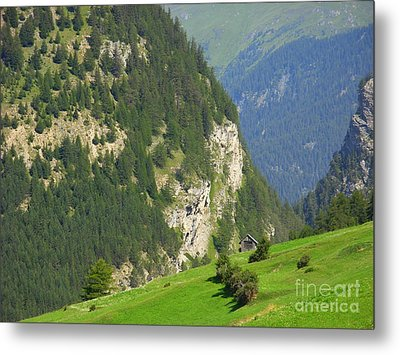 The Alps In Spring Metal Print
