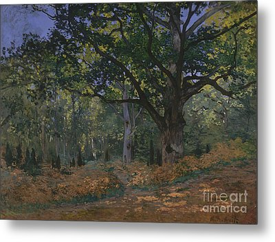 The Bodmer Oak, Fontainebleau Forest, 1865  Metal Print
