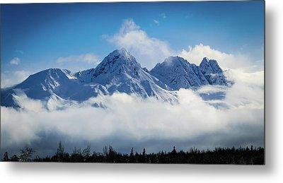 The Chugachs Metal Print