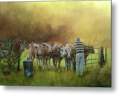 Metal Print featuring the photograph The Cow Whisperer by Wallaroo Images