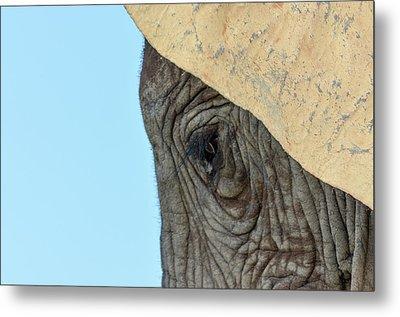 The Eye Of An Elephant Metal Print