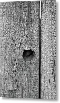The Fence That Sleeps Metal Print by Douglas Barnett