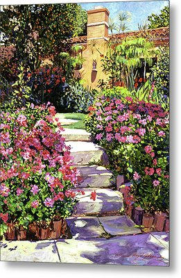 The Five Steps Metal Print by David Lloyd Glover