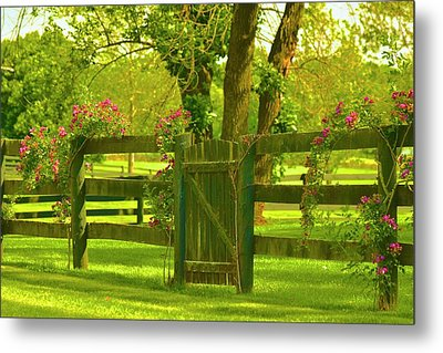 In The Valley Of Love Metal Print