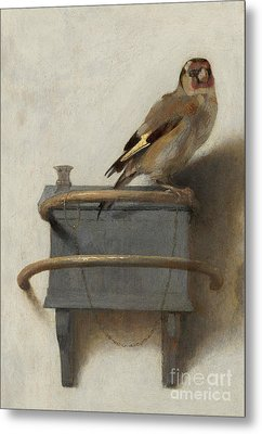 The Goldfinch, 1654  Metal Print by Carel Fabritius